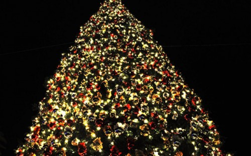 3d-christmas-tree-pictures-1