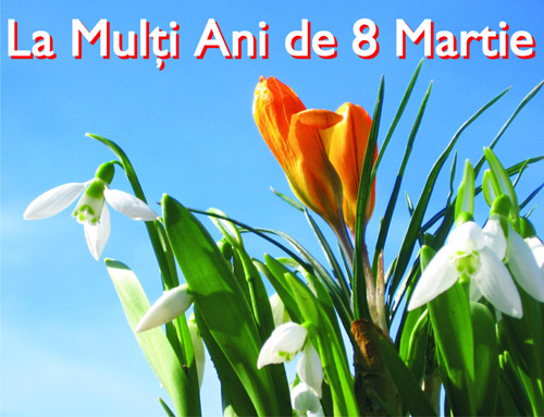 8-martie