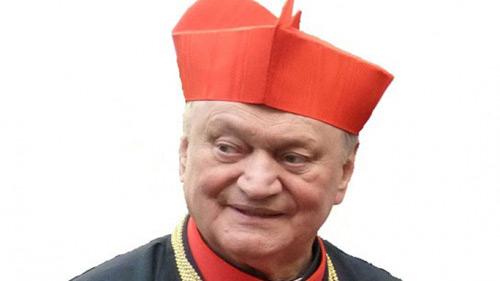 cardinal_lucian_muresan