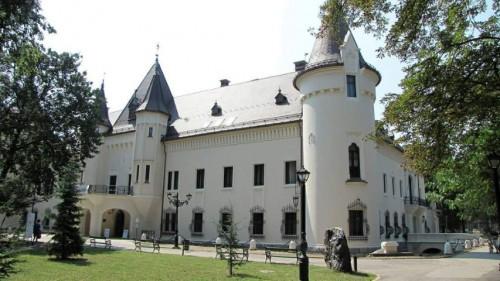 Castelul din Carei2