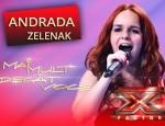 Andrada Zelenak1