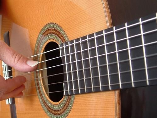 festiva chitara