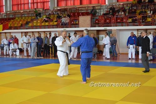 judo13