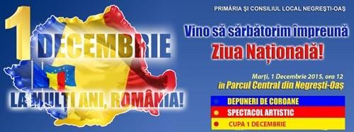 Ziua-Nationala NO2015