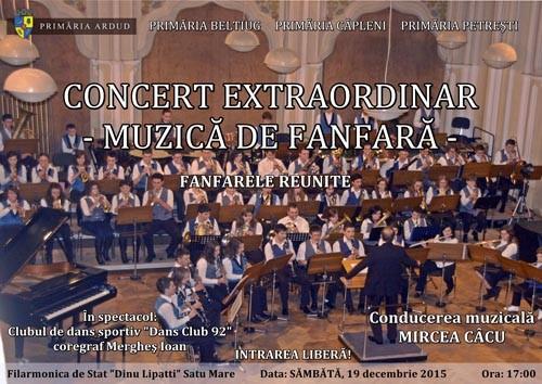 concert Ardud