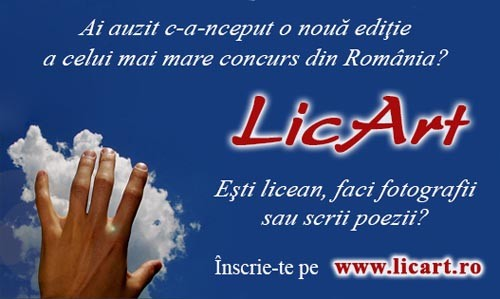 LicArt
