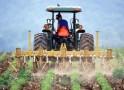 Termenul pentru plățile către fermieri, prelungit până la 30 septembrie