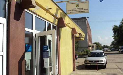 Aproape 4000 de persoane angajate prin AJOFM Satu Mare, în primele 9 luni ale anului