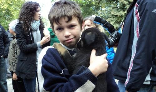 Primul târg de adopţii pentru animale