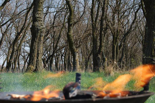 Ajutaţi pădurea prevenind incendiile!