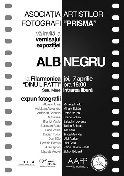 """""""ALB-NEGRU – prima expoziţie a Asociaţiei Artiştilor Fotografi """"PRISMA"""""""