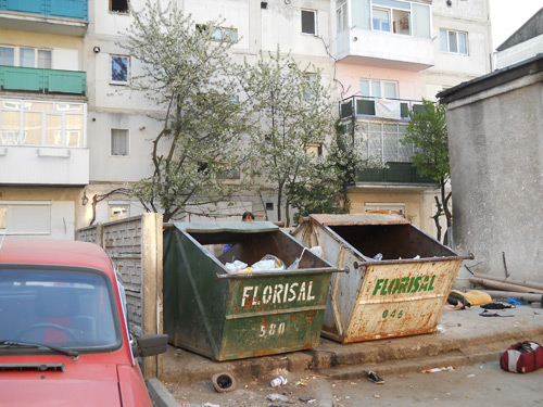 184 de puncte gospodăreşti pentru colectarea selectivă a deşeurilor