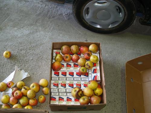 Ţigări ascunse în lăzi cu mere