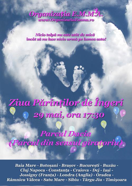 Ziua Părinților de Îngeri, duminică, la Satu Mare