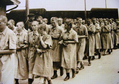 """""""Albumul Auschwitz"""" a ajuns la Muzeul de Artă din Satu Mare"""