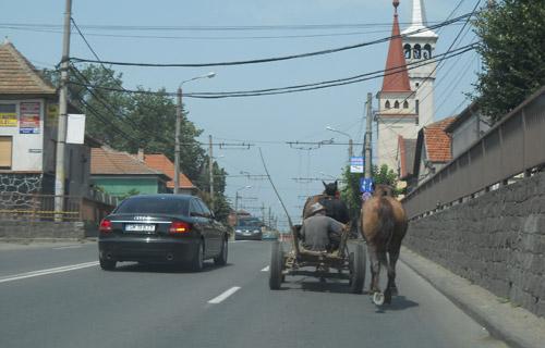 Primăria spune hooo căruțelor care circulă în oraș
