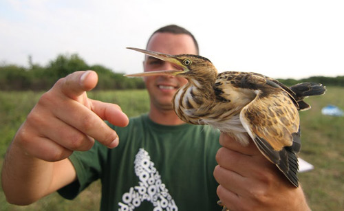 Tabără de ornitologie pe râul Tur