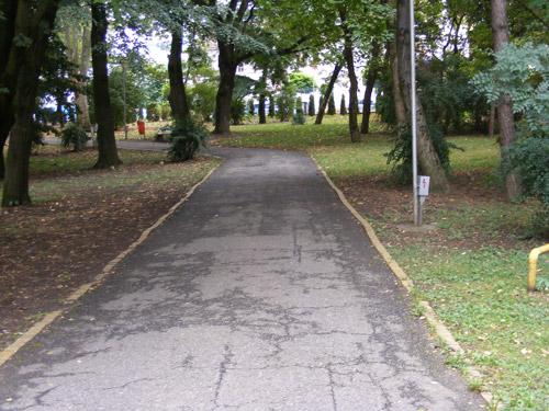 Se curata arborii din Gradina Romei