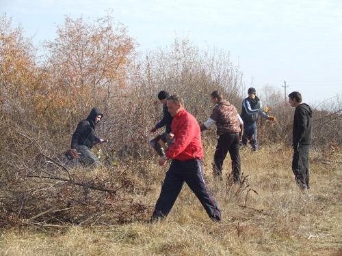 Tinerii social-democraţi din Craidorolţ, au curăţat albia pârâului Ier