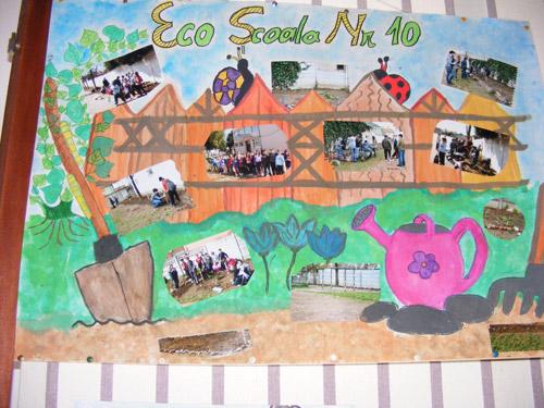 Voluntar pentru un mediu verde