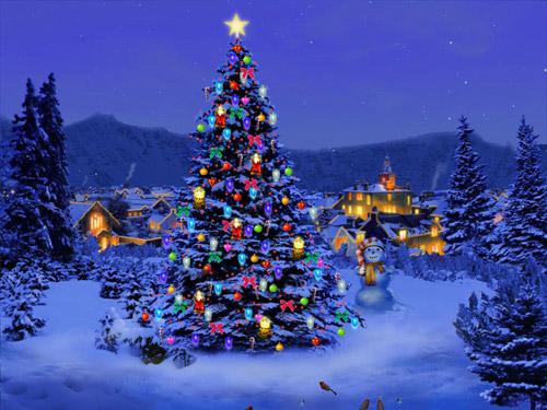 Magia Crăciunului – festival la Carei