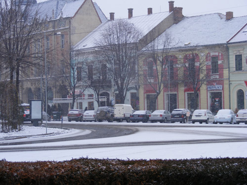 Cod galben de ninsori și viscol la Satu Mare