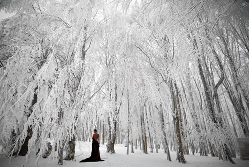Poezie de iarnă