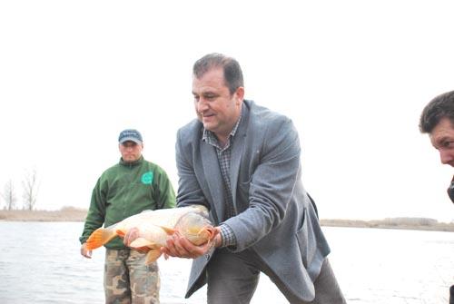 Balta de la Berindan a fost populată cu 2 tone de amur şi crap