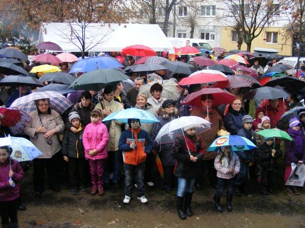 Sătmărenii, alături de USL chiar și pe ploaie