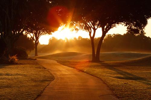 39 de motive ca sa te trezești înaintea Soarelui