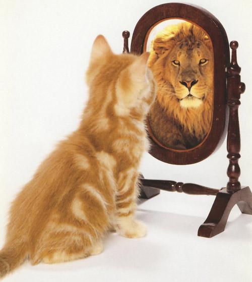 15 moduri prin care poate fi crescuta imediat increderea in sine