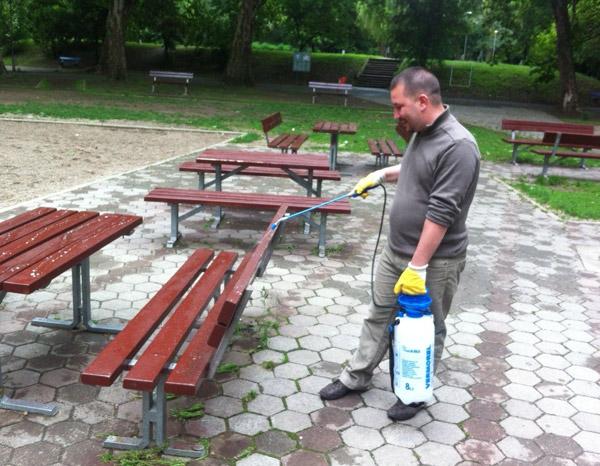 Continuă lucrările de igienizare în Grădina Romei