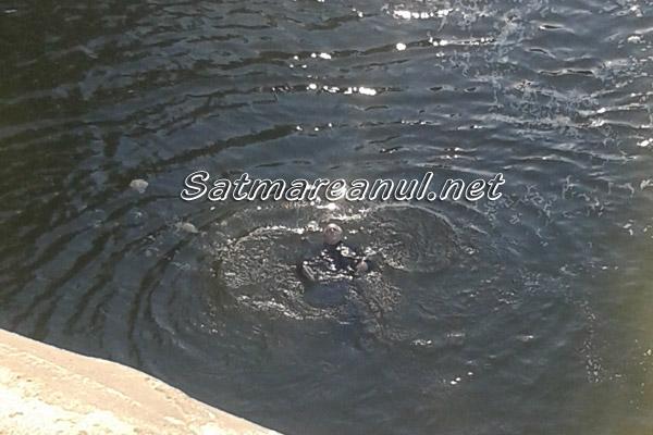 Un bărbat a căzut în Someș lângă podul de fier(galerie foto)