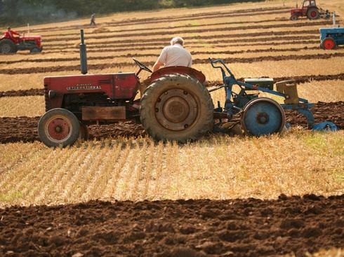Agricultorii trebuie să depună până în 25 iunie, declaraţiile privind veniturile obţinute