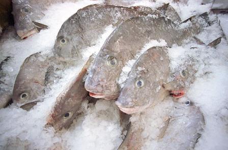 Nereguli la produsele alimentare congelate