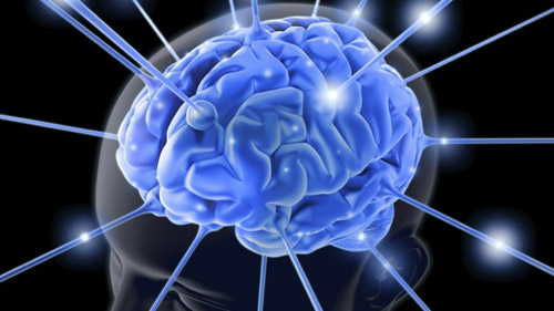 Cele mai bune vitamine pentru creier