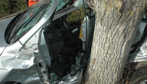 Beat crita, s-a izbit cu mașina de un copac