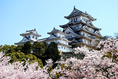 """""""Săptămâna Culturii Japoneze"""" la Satu Mare"""