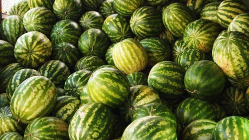 Vezi unde se vor putea vinde lubeniţele în municipiul Satu Mare