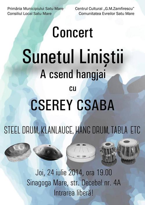 """Cserey Csaba şi """"Radical Acoustic"""" vor concerta joi la Satu Mare"""