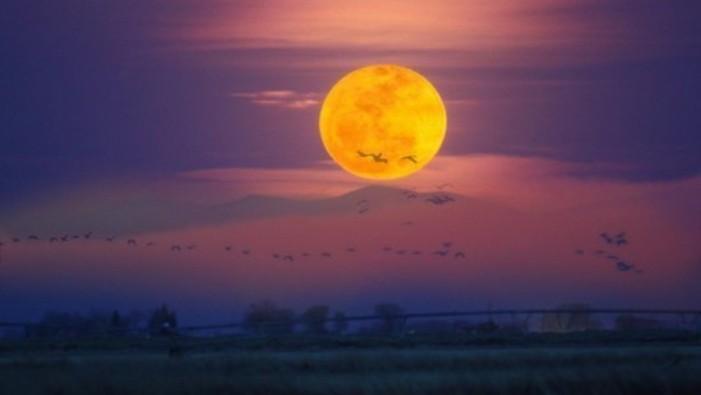 """""""Super Luna"""" va putea fi văzută în seara de 10 august pe cerul Sătmarului"""