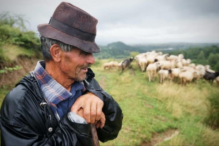 Moș Toton, iuhasul care l-a impresionat pe Remus Țiplea (Galerie foto)