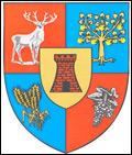 Solicitare ofertă de preț – Consiliul Județean Satu Mare