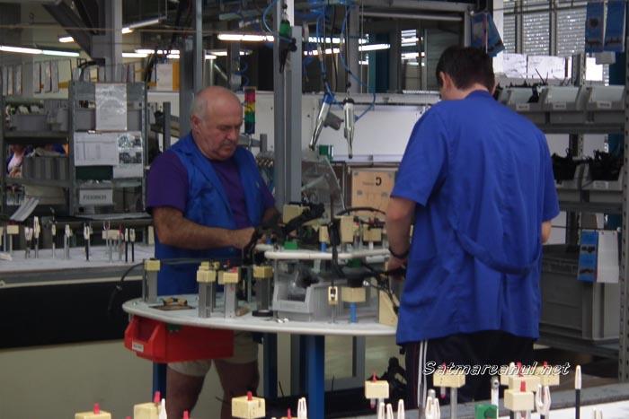 Germania, principalul partener de afaceri ai firmelor din județul Satu Mare