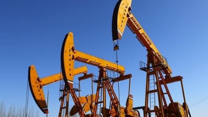 Canadienii caută petrol în județul Satu Mare