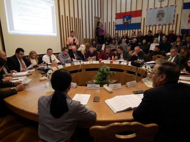 Facilități fiscale pentru atragerea de investitori în municipiul Satu Mare