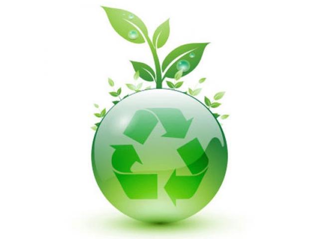Se prelungește perioada de colectare a deșeurilor vegetale în municipiul Satu Mare