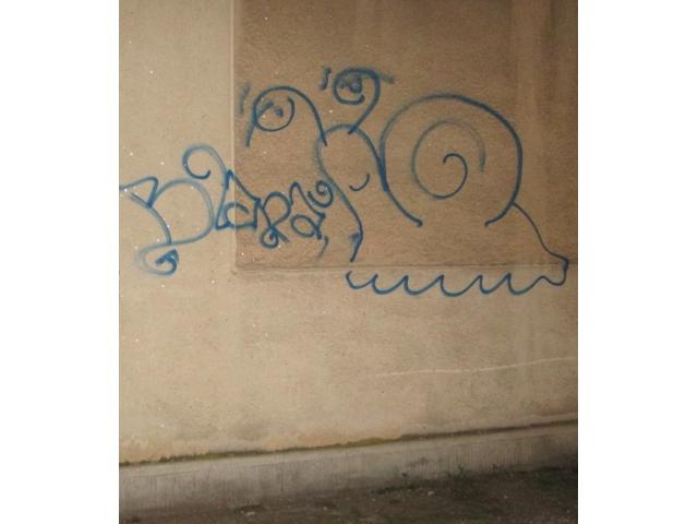 Tânăr din Satu Mare amendat pentru graffiti