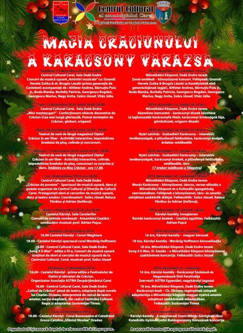 """Vezi programul Festivalului """"Magia Crăciunului"""" din Carei"""