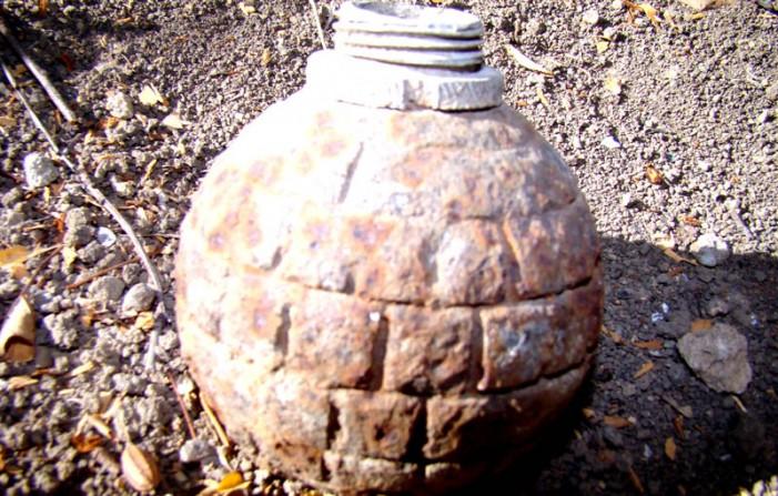 Grenadă găsită pe un câmp din Gerăușa
